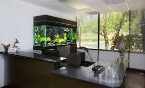 fish tank stand design ideas office aquarium. Grand Office Room Decoration Idea With Sleek L Shape Table Also Laptop Plus Modern Chair · Best Design Of Cool Aquariums Fish Tank Stand Ideas Aquarium