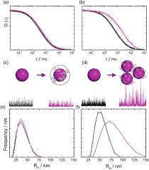 Dynamic Light Scattering Method Fluorescence Correlation Spectroscopy Fcs And Dynamic