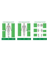 Marma Chart Marma Therapy Chart Set Of 3 By Dr S Ajit Bams