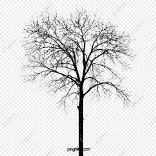 無料ダウンロードのための真っ白な雪の樹 純白 木 雪の木png画像素材