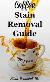 coffee stain removal guide for clothing upholstery carpet and your stained mug