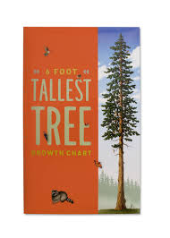 How High To Hang A Growth Chart Growth Chart Tallest Tree