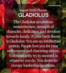 august birth flower gladiolus which is the birth flower for august know about the august birth flower gladiolus here find the meaning of august flowers