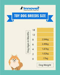 Pekingese Growth Chart Unique Puppy Growth Chart Pekingese 2019