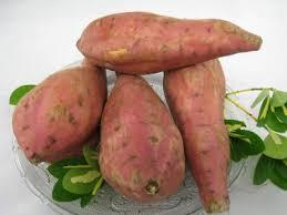 """Résultat de recherche d'images pour """"patates douces"""""""