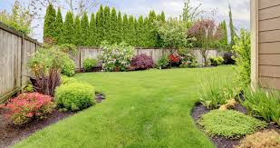 Image result for care of your garden and landscape