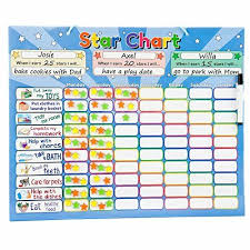 Star Chart Of A Certain Date Roscoe Learning Responsibility Star Chart Customize For 13 Kids Magnetic