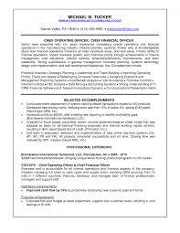Cover Letter Cio Resume Samples Cio Resume Examples 2013 Cio