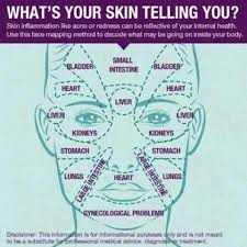 Chinese Acne Face Chart Face Mapping For Acne The Ultimate Guide Health