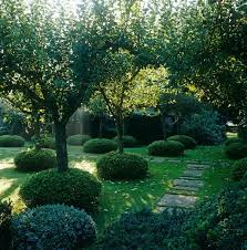 Small Picture 58 best Garden Trees images on Pinterest Garden trees Gardens