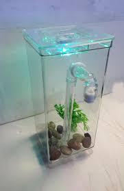 Fun Fish Tank Decorations My Fun Aquariums Gravityflow Self Cleaning Tank The Original