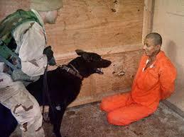 """Résultat de recherche d'images pour """"Gina Haspel  CIA Irak torture"""""""