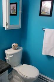 floor magnificent small bathroom wall color