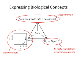 3 expressing biological concepts data verbal graphicalformal bacterial growth rate is exponential