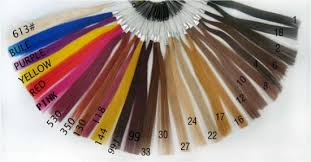 China Professional Remy Human Hair Color Ring Color Chart