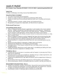 Accounts Receivable Resume Samples Awesome Accounts Receivable Resume Sample Professional Templates 5
