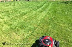 Lawn Mowing Patterns Push Mower