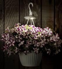 planter lighting. Spotlights-Solar-Accent-Lighting-Patio-Planter-and-Hanging- Planter Lighting