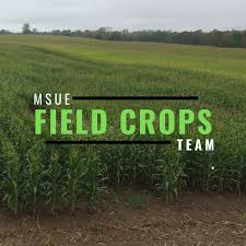 Michigan Field Crops