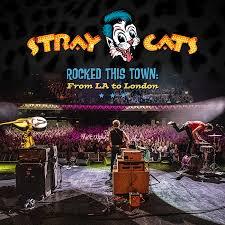 <b>Stray Cats</b>