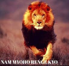 chanting nam myoho renge kyo why it works nam myoho renge kyo chant for happiness buddhists take action