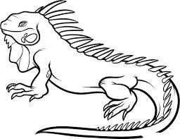 Cool Animal Coloring Pages Iguana Animal Coloring Page Animal