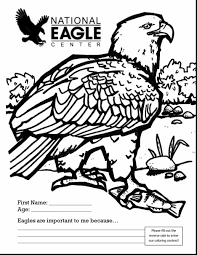 Small Picture Unbelievable bald eagle coloring page printable with bald eagle