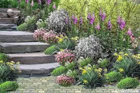 Best 25 Cottage Gardens Ideas On Pinterest  Veronica Flower Cottage Garden Plans