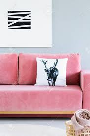 Pink velvet couch Interior Pillow With Deer Case Placed On Pink Velvet Sofa In The Real Photo Of Bright Living 123rfcom Pillow With Deer Case Placed On Pink Velvet Sofa In The Real Stock