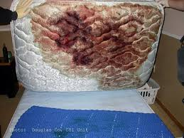 stained mattress. Plain Stained Lifting The Mattress Revealed A Still Moist Stain DNA Tests Done Later  Indicated It Was Likely Blood Of Jessica Ou0027Grady Inside Stained Mattress O