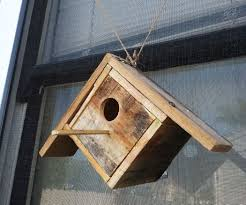 House Made From Pallets See Thru Pallet Birdhouse Cd Cases Birdhouse And Pallets