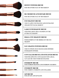 there are diffe types of makeup brushes so it s important to know which ones to use in your makeup routine here is a selection of important makeup brus