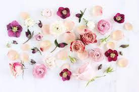 Aesthetic Desktop Wallpaper Roses