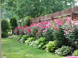 Cozy Design Fence Landscaping Ideas Best 25 On Pinterest Privacy