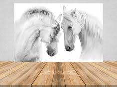 Προϊόν - <b>3pcs Modern Art White</b> Horse Black and White Picture A4 ...