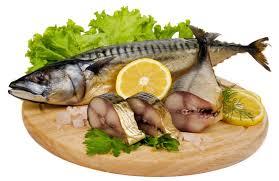 fish healthy food
