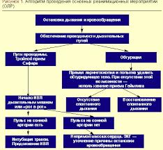 Сердечно легочная реанимация на догоспитальном этапе Статьи по  Сердечно легочная реанимация на догоспитальном этапе