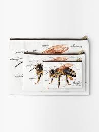 Honey Bee Anatomy Chart Zipper Pouch