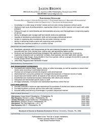 Professional Resume Sample Resume Samples