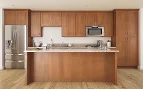 Prefinished Kitchen Cabinets 100 Kitchen Cabinets Reno Kitchen Remodel Lessons