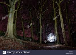 trees and ball of light at night light painting in woods in yorkshire uk