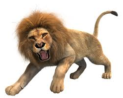 Image result for lion roar