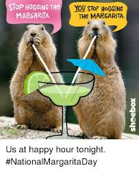 Image result for national margarita day 2019 funnies