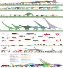 Dinosaur Sizes Comparison Chart Dinosaurs Size Comparison Charts Pixelsham