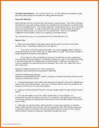 Professional Resume Writers Chicago Chicago Resume Template