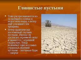 Реферат на тему растения полупустынь и пустынь Интересное в мире  реферат на тему растения полупустынь и пустынь любое