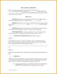 examples of custody agreements custody agreement joint template unique papers online child support
