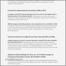 Account Executive Resume New Bank Account Manager Resume Examples Unique Best Cio Resume Best