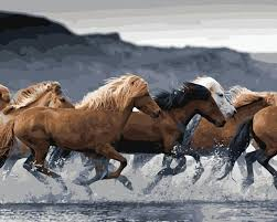 mahuaf j452 watching wild horses run frameless pictures painting by numbers diy digital canvas oil