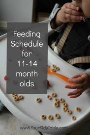 easy feeding schedule for 1 year olds